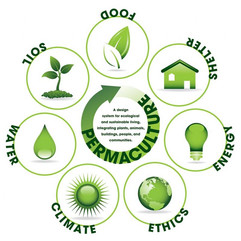 permaculture-image.jpg