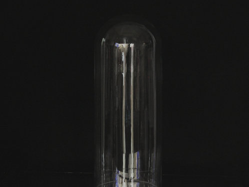 "4x12"" Glass Dome vase"