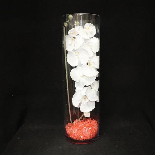 "6x20"" Cylinder glass vase"