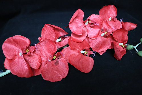 Red Cheap Orchid