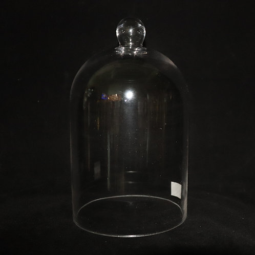 "6"" Opening Glass Cloche Dome vase"