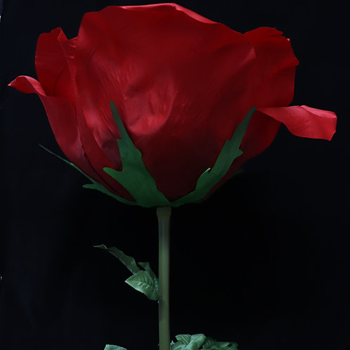 Giant Rose - Red