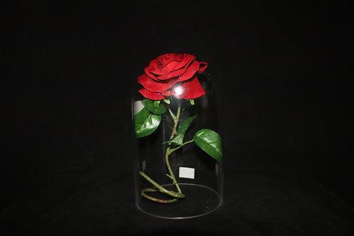 "6x12"" Dome Glass vase"