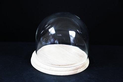 "8x6"" Glass Dome w/Wood base"
