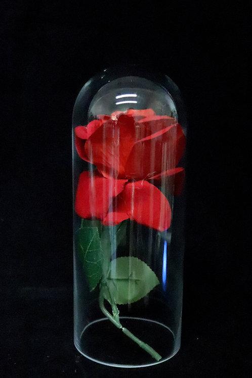 "5x14"" Glass Dome Vase"
