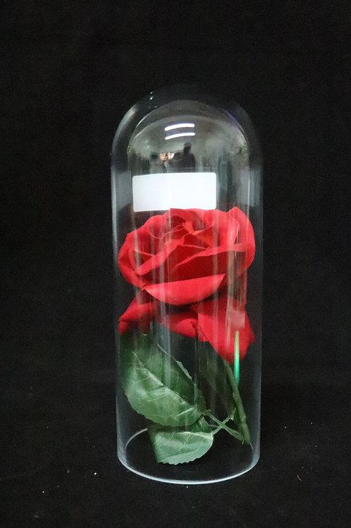 "4x10"" Dome Glass Vase"