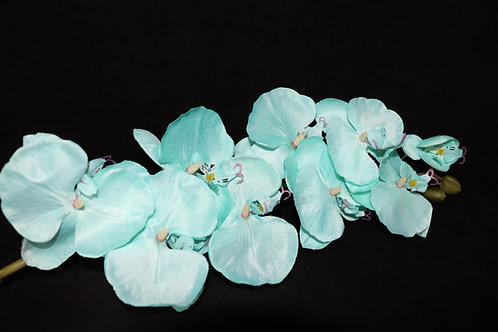 Tiffany Cheap Orchid