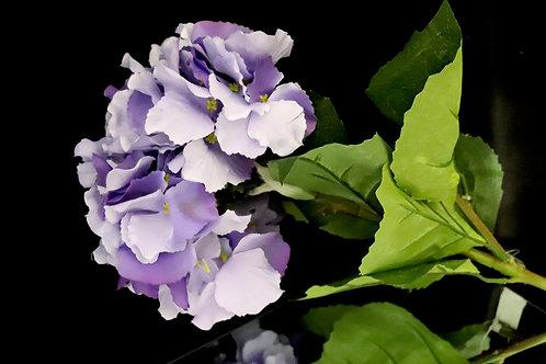 Long Stem Hydrangea Purple