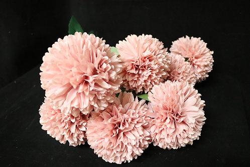 Bunch of Chrysanthemum w/7heads