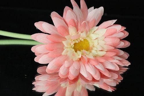 Daisy Single Flower 50pcs