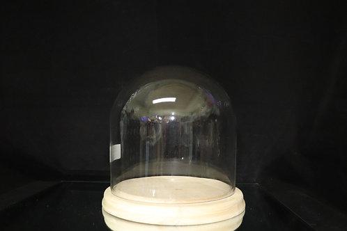 "8x8"" Glass Dome w/Wood base"
