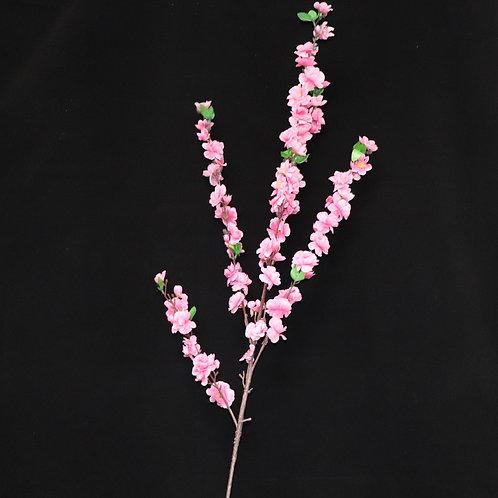 """Cherry Blossom 50"""""""