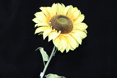 """Single Sun Flower 53"""""""