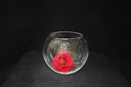 "7"" Glass Fishbowl"