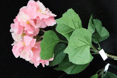 Long Stem Hydrangea Pink