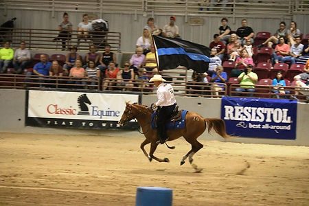 well balanced horsemanship flying l stable adopt a mustang