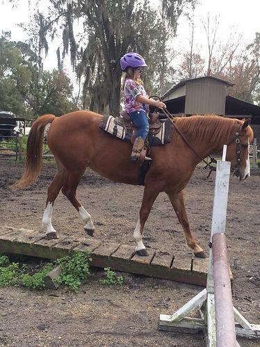 parelli clinton anderson safe horse