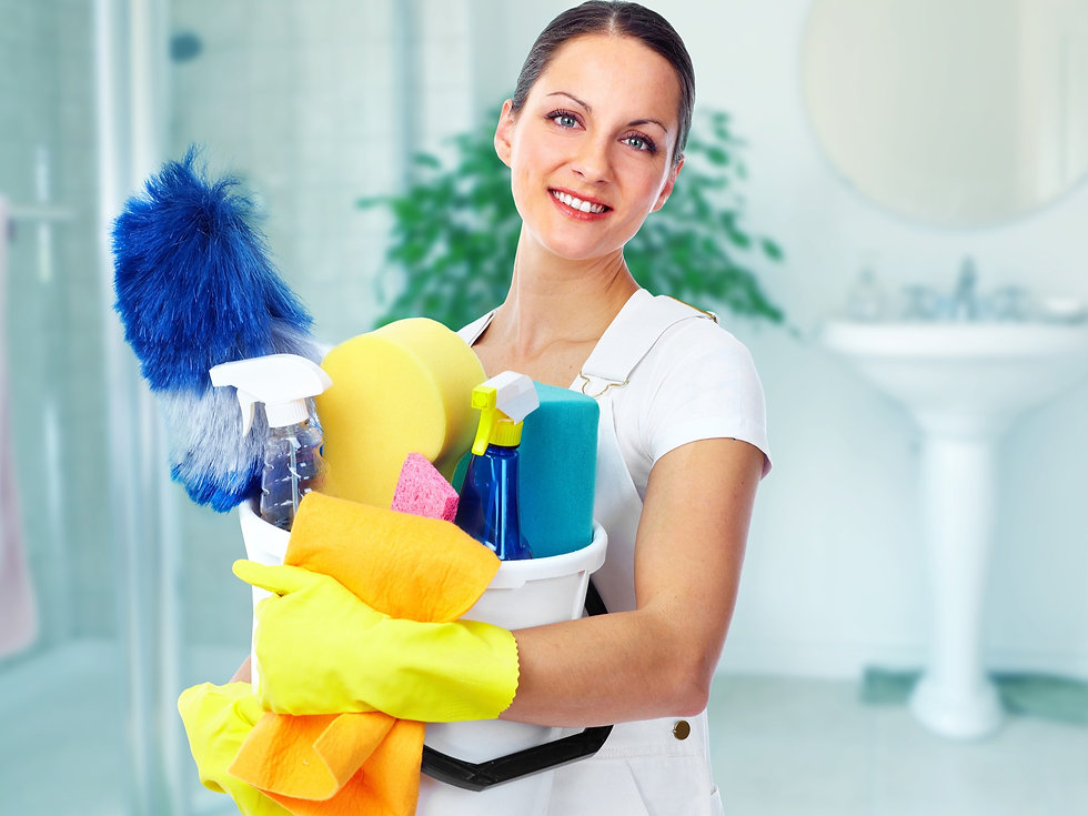 Young%20smiling%20maid.%20House%20cleani