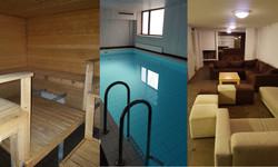 sauna_allas