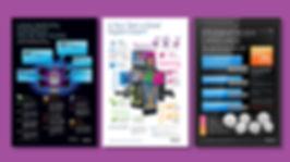 MS Infographics_2.jpg