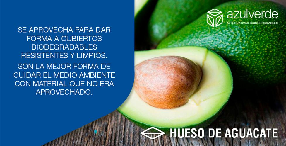 HUESO-AGUACATE.png