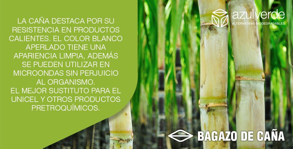 bagazo-CANA.png