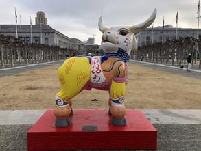 Community Celebrates Chinese New Year Despite Parade Cancellation