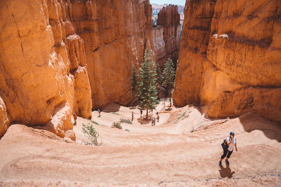 Bryce Canyon, Utah | Kelly Ngo | Chromatone Studios | Travel Destination Photography