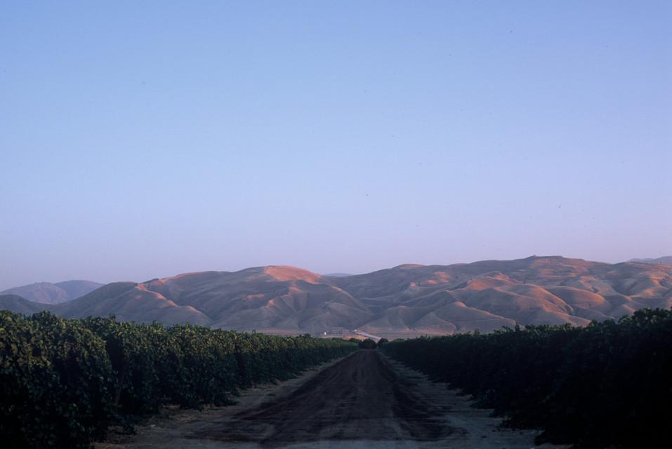 California | Kelly Ngo | Chromatone Studios | Travel Destination Photography