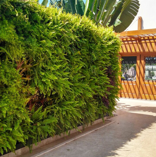 jardim vertical.jpg
