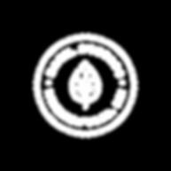 Zazil Studio Logo-01.png