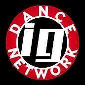 IGDN-Logo.png