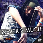 Ore Never 2 Much-Cover Art.jpg