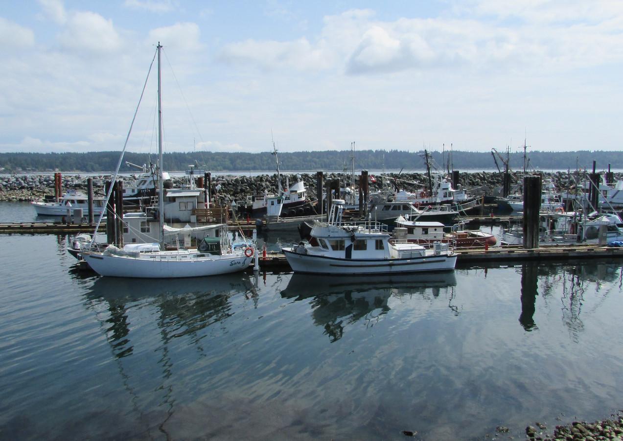 Fisherman's Wharf, Campbell River, BC -