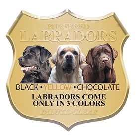 Labs_3-Colors_500.png