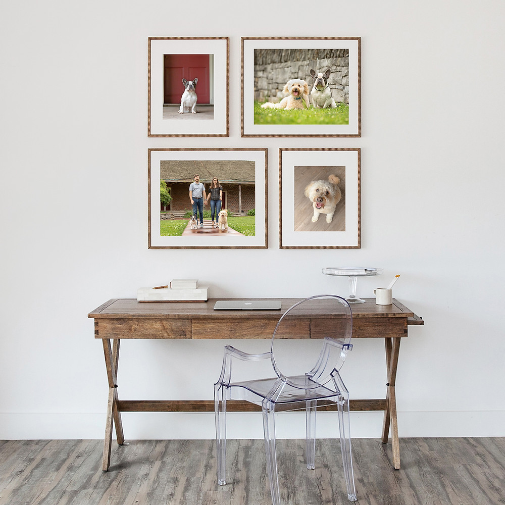 Custome framed print gallery of dogs and their people.