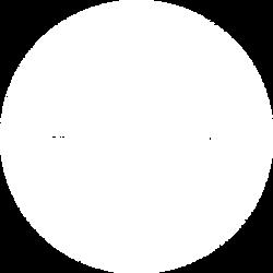 humminbird.png