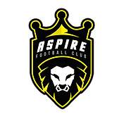 apire yellow logo small.png