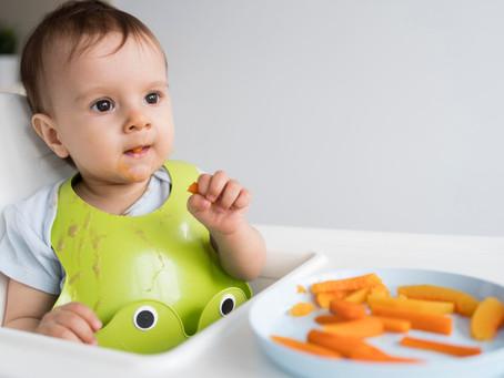 Alimentação saudável para o primeiro ano de vida do seu bebê