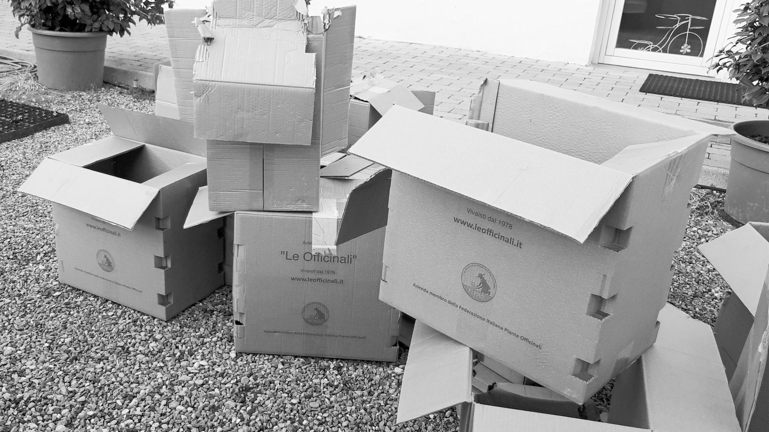 Gli scatoloni vuoti li abbiamo messi da parte
