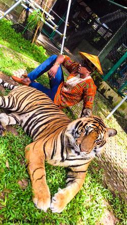 Tigers Den - Phucket, Thailand