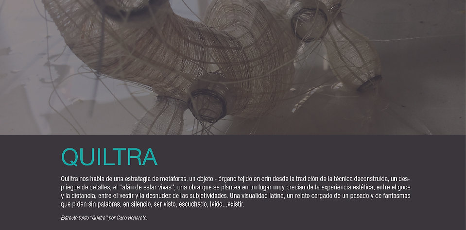 QUILTRA 0-02-01.jpg