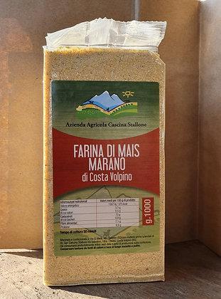 Farina di mais marano (Azienda Agricola Cascina Stallone)