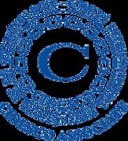 2021-03 Cidesco Logo.png