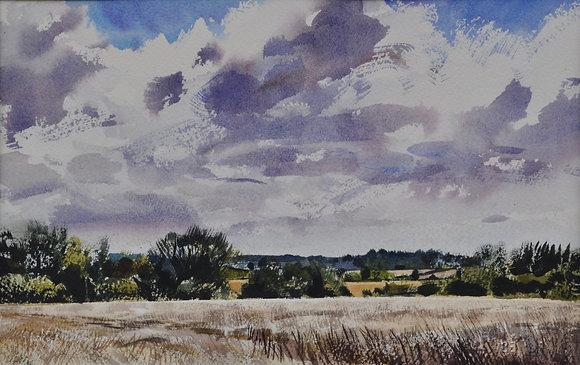 Summer Cornfields, Coddenham
