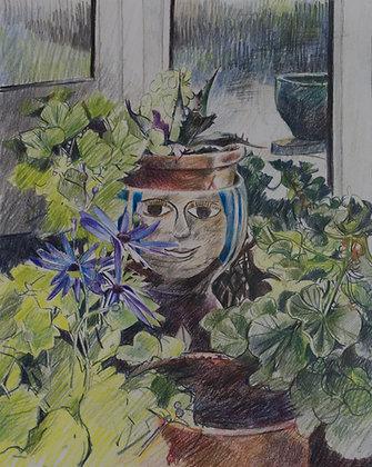 Clare Lambert Pot