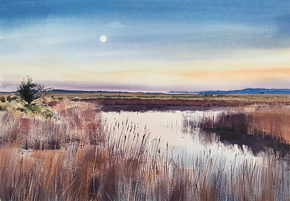 Cley Marshes SOLD