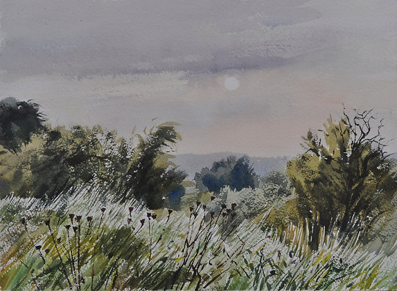 September Sun, Ridgeway Evening