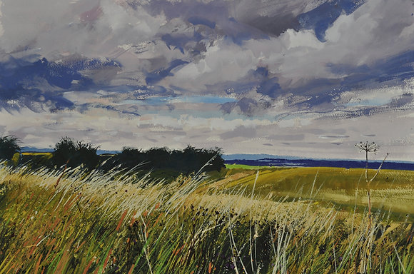 Cornfield and summer clouds, Ridgeway