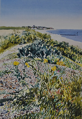 Horned Poppies, Sea Kale - SOLD